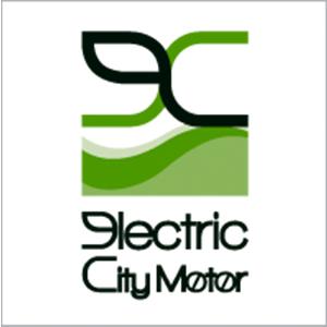 electriccitymotor