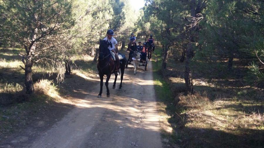 De ruta a caballo por el valle de los pedroches prode - El valle de los caballos ...
